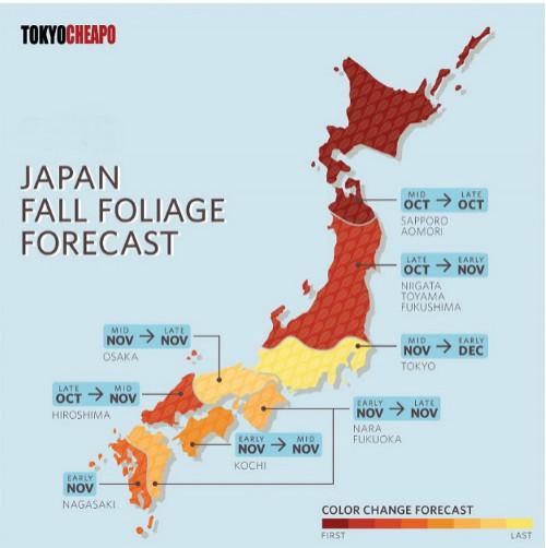 Dự báo lịch mùa lá đỏ ở Nhật Bản