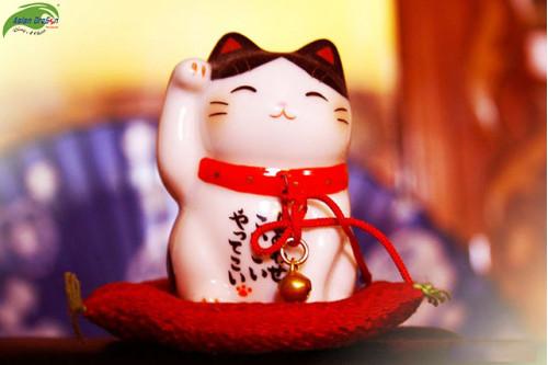 Mua gì về làm quà khi đi du lịch Nhật Bản