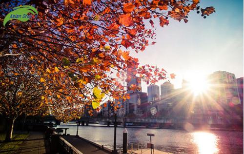 Du lịch Úc vào mùa nào được xem là thời điểm lý tưởng nhất?