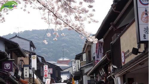 Những câu chuyện hay ở đất nước Nhật Bản