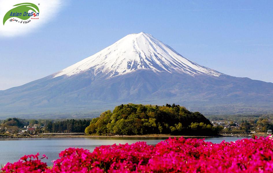 Tour du lịch Nhật Bản Tokyo - Narita – Fuji – Hanano Miyako  – Yokohama 4 ngày 3 đêm 1